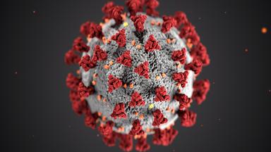 Titelbild Thema Coronavirus